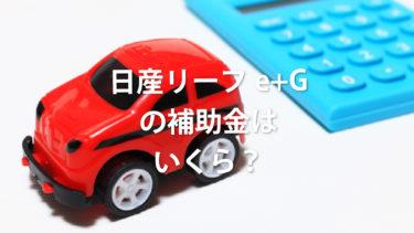 電気自動車「リーフe+G」の補助金はいくら?維持費・航続距離も解説